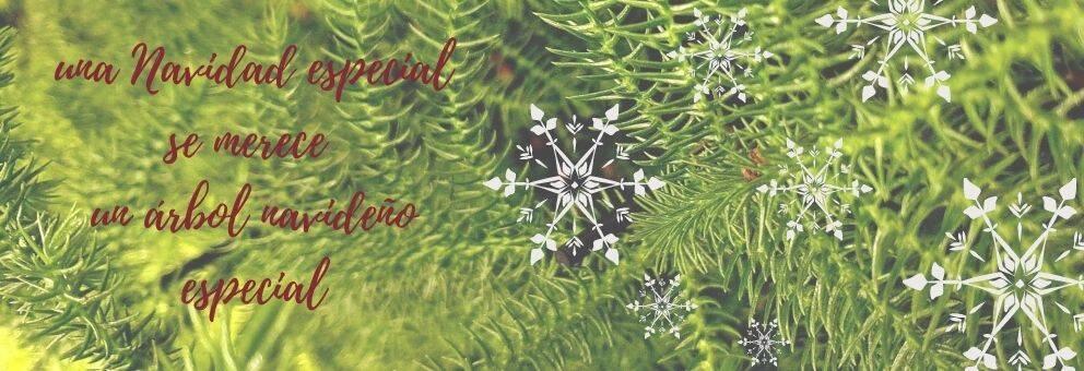 araucaria árbol de navidad