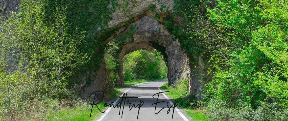 roadtrip para descubrir las plantas de España
